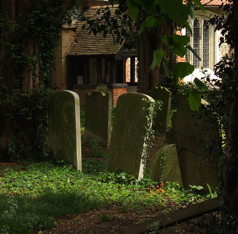 The Churchyard,All Saints,Theydon Garnon.