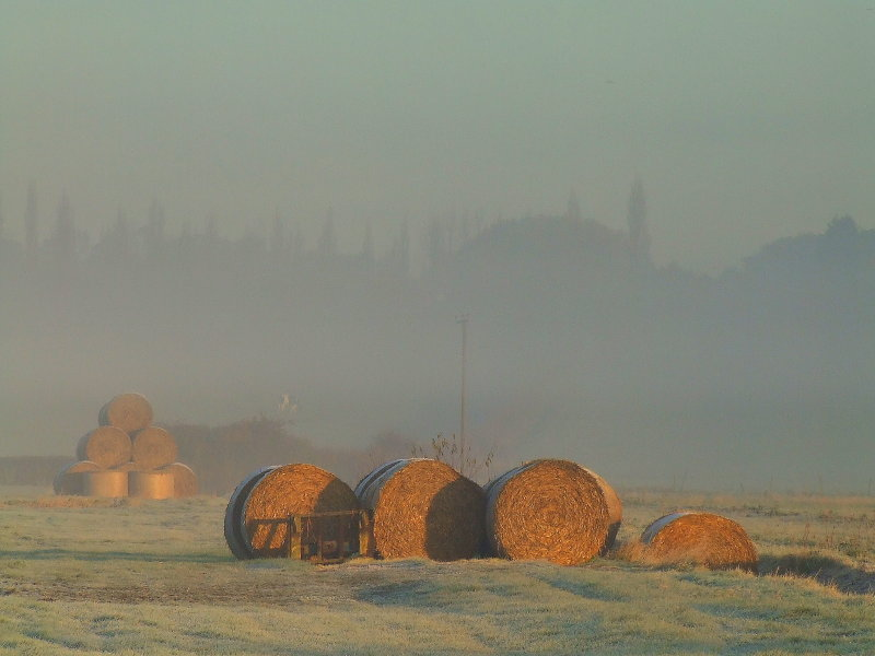 Early sunshine,bales of straw and mist.