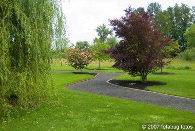 D200-2007-06-06_016.jpg