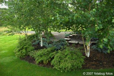 D200-2007-06-06_123.jpg