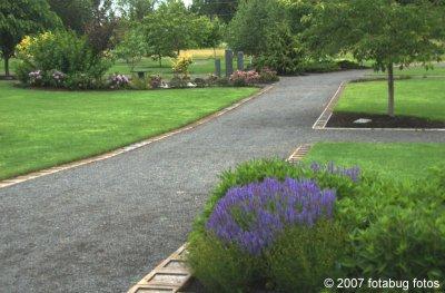 D200-2007-06-06_254.jpg