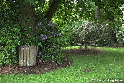 D200-2007-06-06_267.jpg
