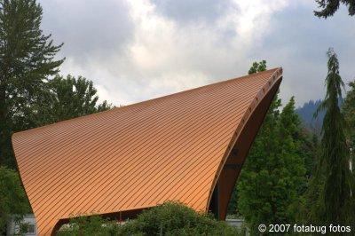 D2x2007-06-06_038.jpg