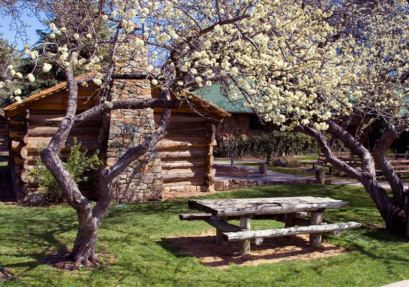 07-03 Prescott Spring 06.JPG