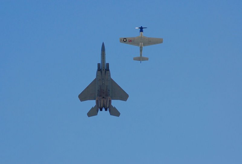 Eagle and Mustang