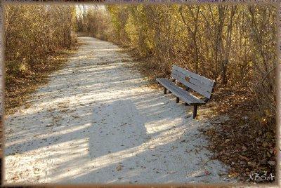 bench...