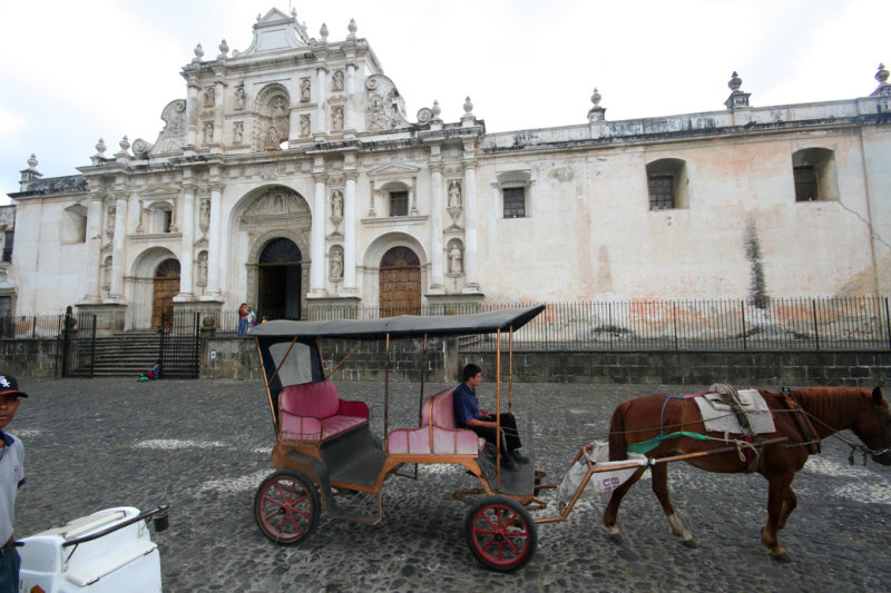 Horse and buggy rides are popular with Antiguas tourists.