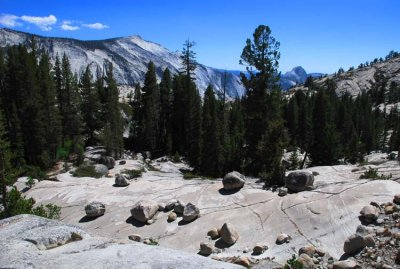 Large Grouping of Glacial Erratics
