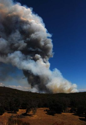 Chasing the Pine Fire in San Diego