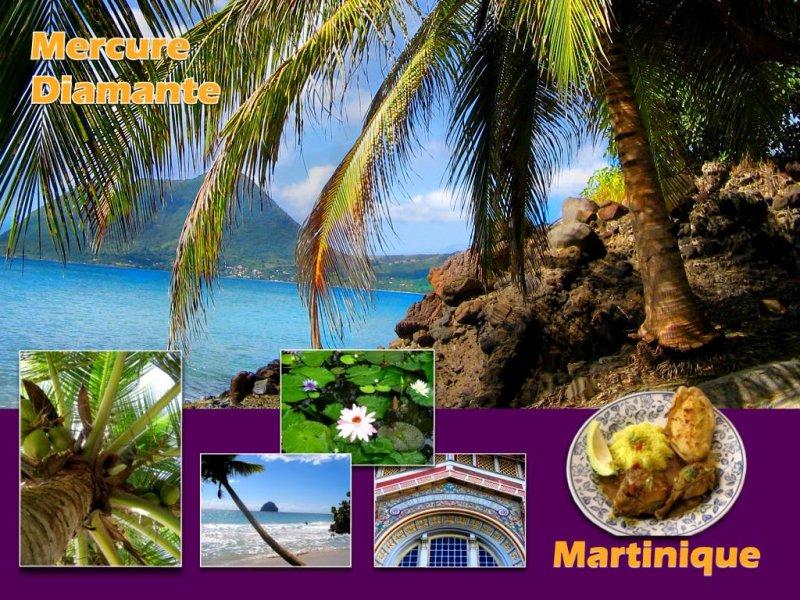 Martinique Caribbean Islands