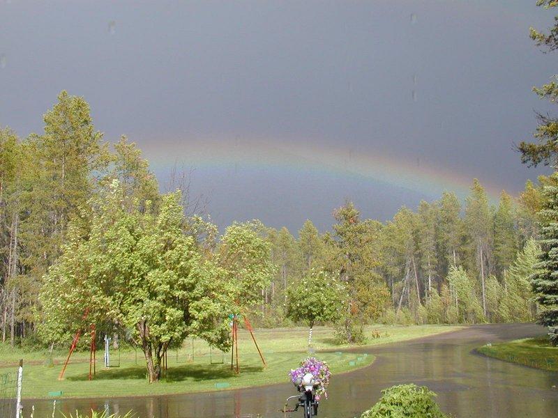 rainbow Image004.jpg