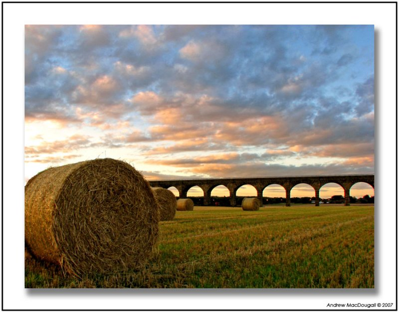 Bales and Viaduct 2.jpg