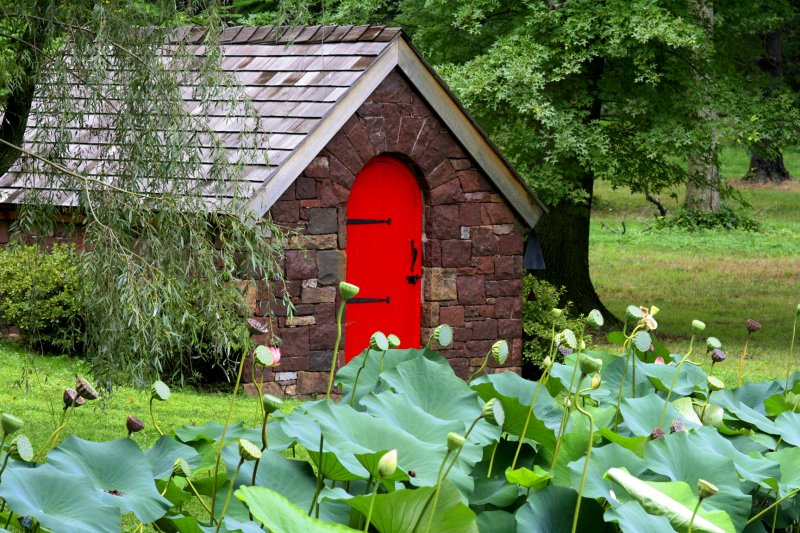 Hobbit Pond House