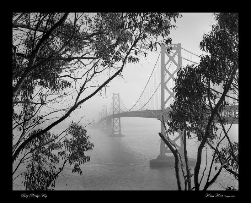 Bay Bridge Fog  16x web.jpg