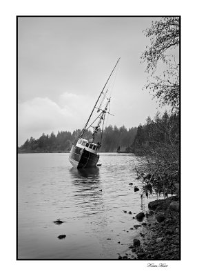 boat yaquina bay 06 web.jpg
