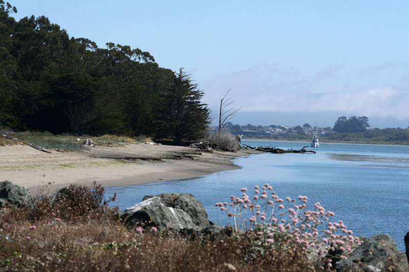 3443  Humboldt Bay