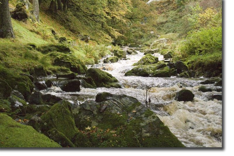 WalesConv008.jpg