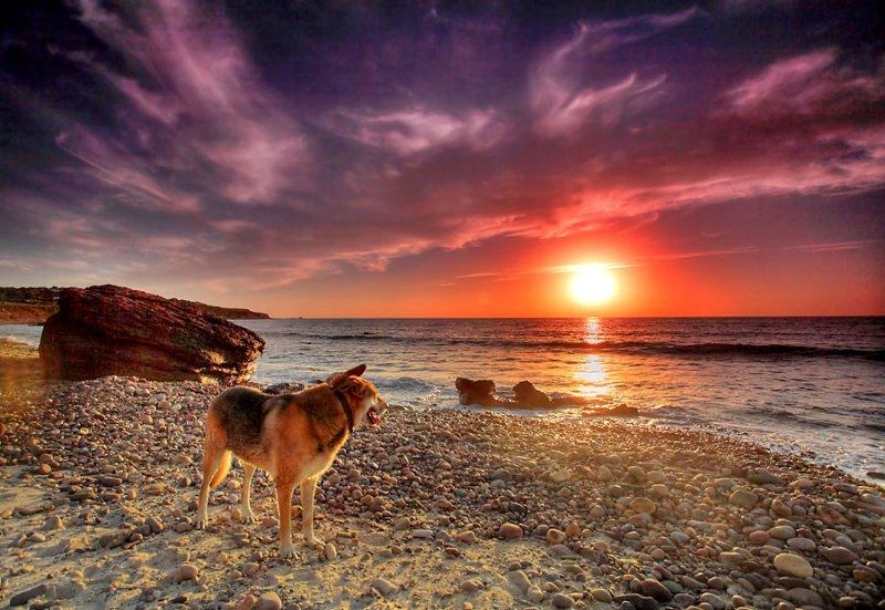 Hallet Cove Sunset South Australia.jpg