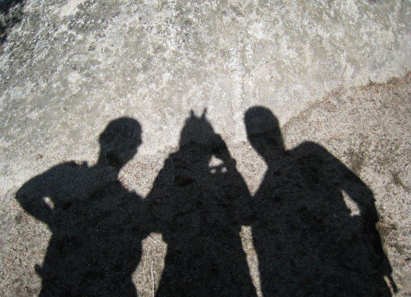 posed shadows