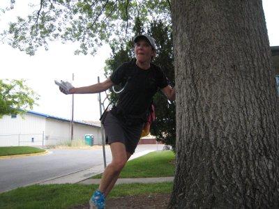 Karen touches the tree