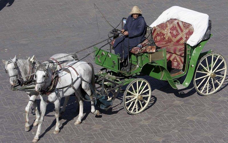 Transport of tourists
