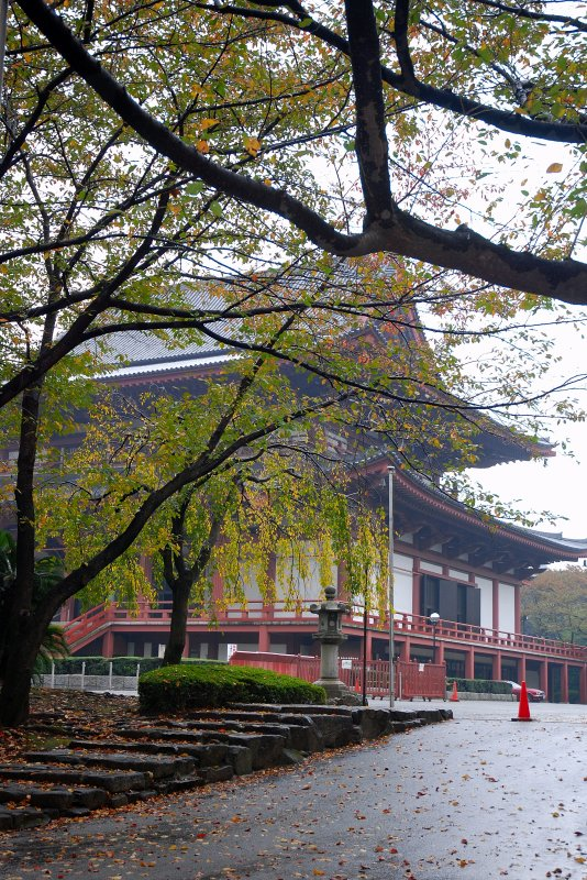 Buddest Temple in Autumn Weather