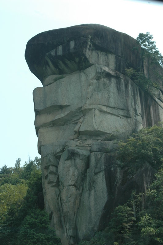 The Lion King Rock