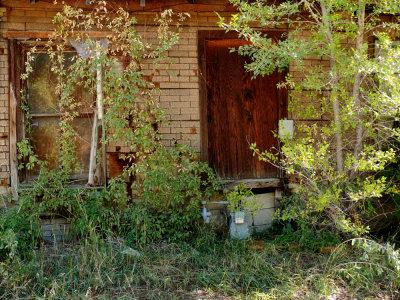 Overgrown, Wellington, Utah, 2006