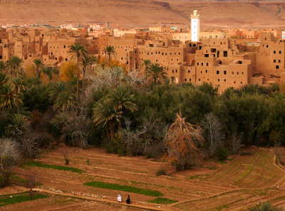 Todra Palm Grove, Tineghir, Morocco, 2006