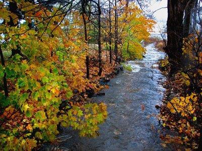 le ruisseau du moulin de St-Laurent