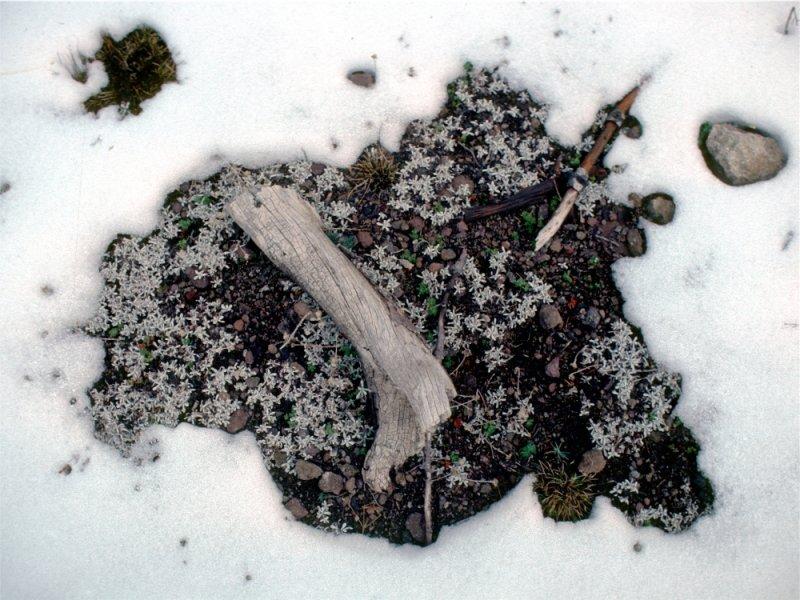 Snow melt art