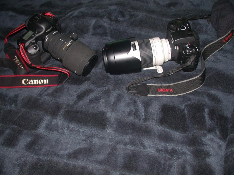 Sigma Lens On Canon Body And Vice Versa