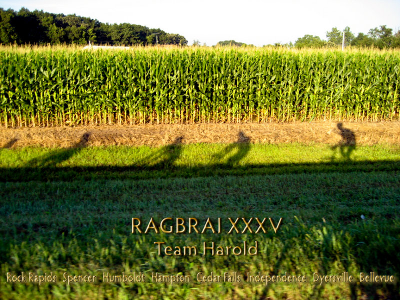 Team Harold XXXVb.jpg