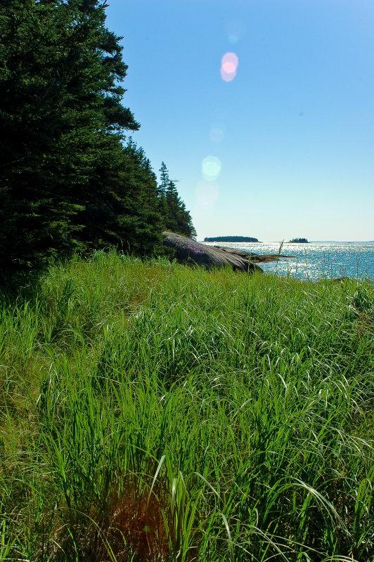 Wreck Island