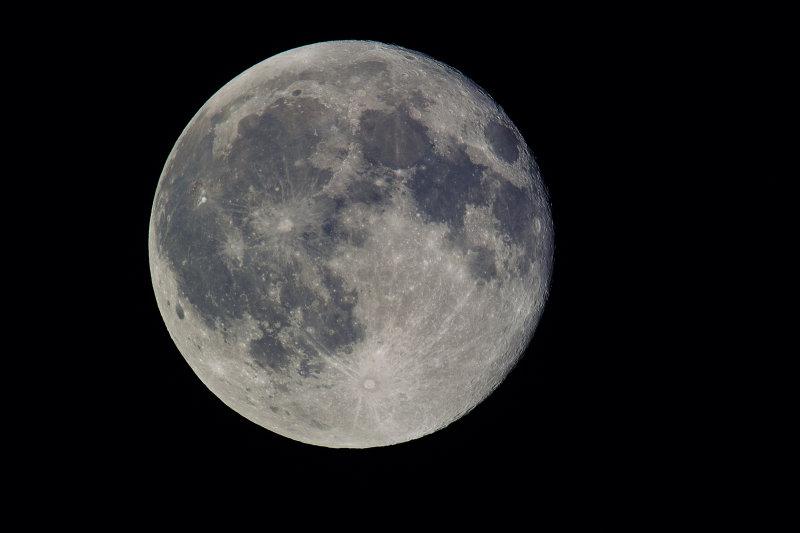 SDIM0637 blue moon.jpg