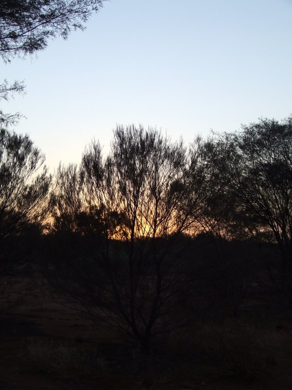 Sunrise Breaking in the Outback
