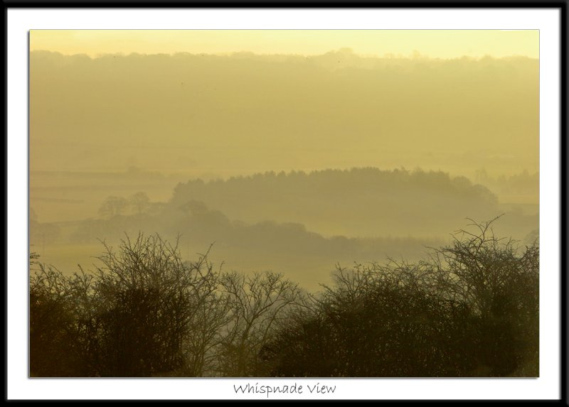 A view from Ashridge towards Whipsnade