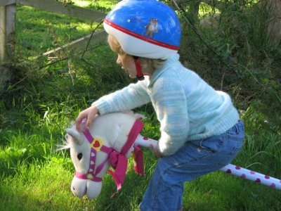 Morgan's hobby horse playes music when his ear it pinched and messages and horse noises on the other.  She loves the misic ear.