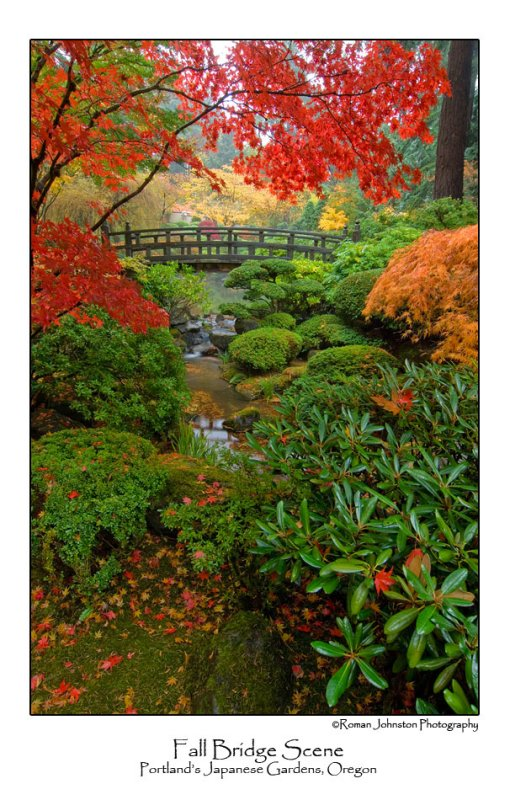 Fall Bridge Scene.jpg  (Up To 30 x 45)