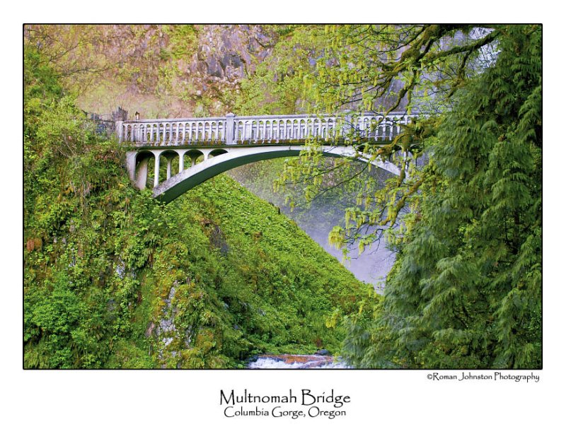 Multnomah Bridge.jpg (Up To 20 x 30)