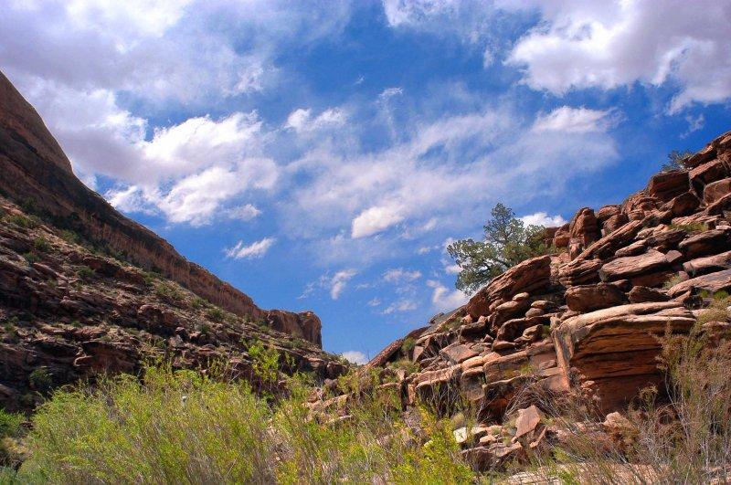 Canyon sky