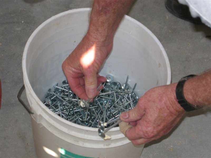 bucket of nails for the tin roof