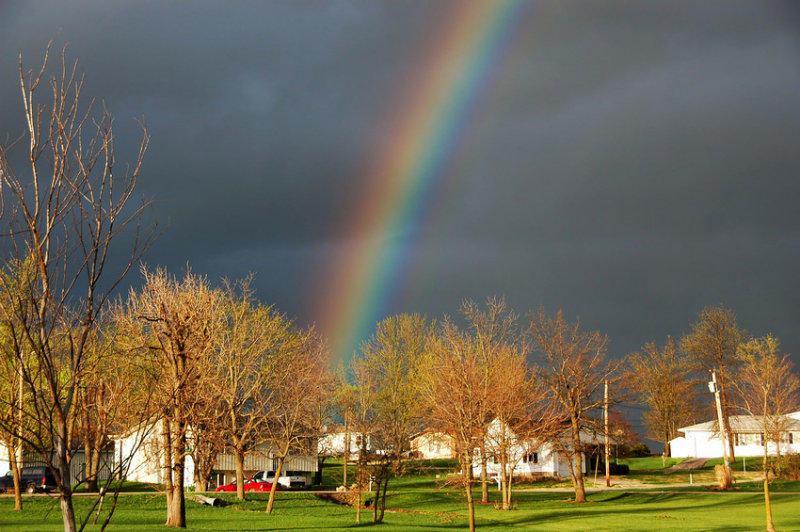 Rainbow in Early Spring