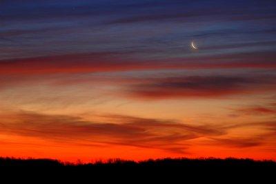 Crescent Morning