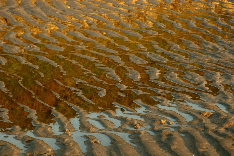 Abstract: (sand ripples & reflections)