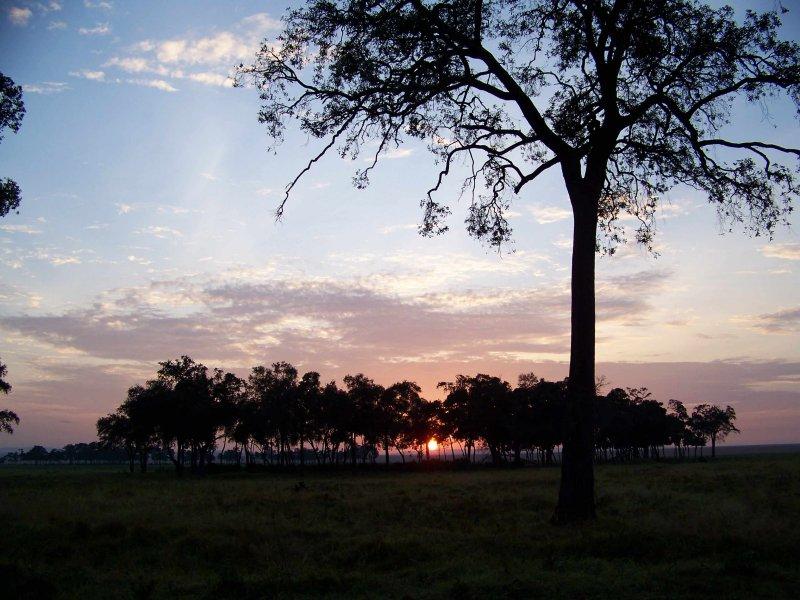 Sunrise-0670