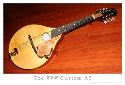 RAW Custom Mandolin