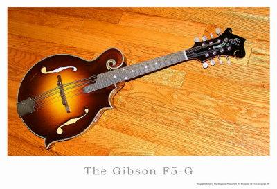 Gibson F5-G