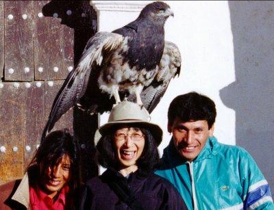 Thats a real bird.  Eagle ?