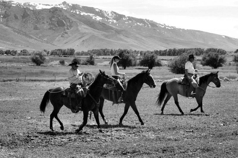 Range Riding